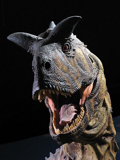 Velociraptor Quick Facts Carnotaurus - DinoPit