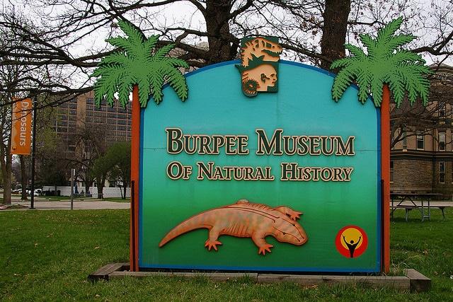 Burpee Museum