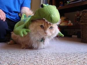 Animals Dressed As Dinosaurs: Rex Cat